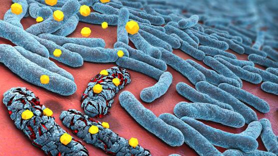 Antibiotika Assoziierte Diarrhoe Aad Durchfall Nach Antibiotika